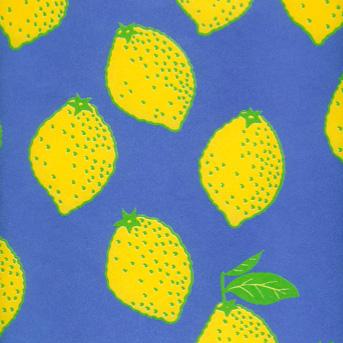 Geschenkpapier | Zitronen | Gabi Kohwagner